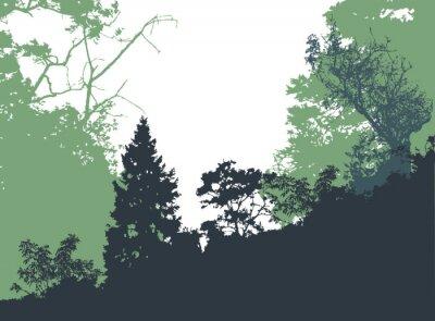 Póster Panorámica del paisaje forestal con las siluetas de los árboles