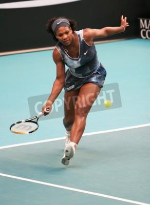 Póster PARIS - 11 de febrero: US Serena Williams devuelve la pelota en el torneo abierto del GDF SUEZ WTA, el estadio de Pierre de Coubertin el 11 de febrero de 2009 en París, Francia.