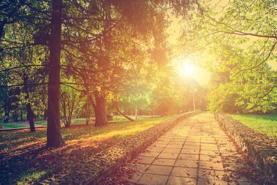 Póster parque