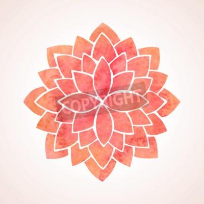 Póster Patrón de flor de la acuarela de loto rojo sobre fondo blanco