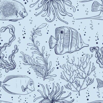 Póster Patrón sin fisuras con peces tropicales, plantas marinas y algas. Mano de la vendimia ilustración vectorial dibujado vida marina. Diseño para la playa de verano, decoración, impresión, patrón de relle