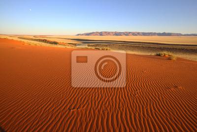 Patrones en la arena