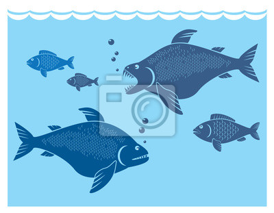 peces grandes