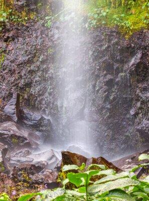 Póster Pequeña cascada de agua en Anse des Cascades, isla de la Reunión