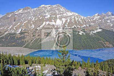 Peyto lago. Parque Nacional de Banff.