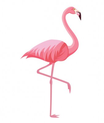 Póster Pink flamingo on a white background. Vector illustration.
