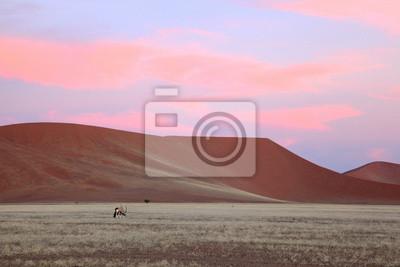 Pink nubes rojas del atardecer sobre las dunas de arena del Namib