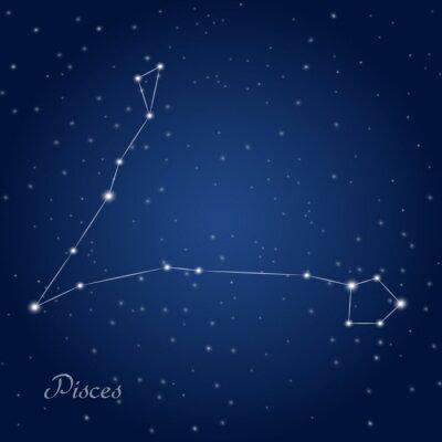 Póster Piscis signo del zodiaco constelación en el cielo nocturno estrellado