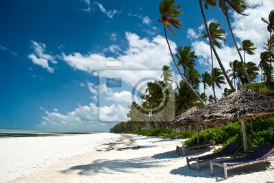 Playa Trobical en Zanzíbar