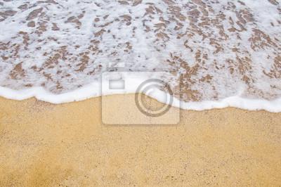 playa y el mar tropical