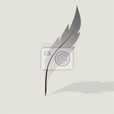 Pluma pluma