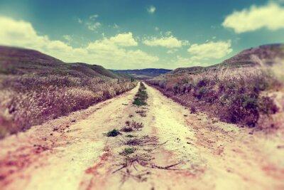 Póster Por Camino el campo.Paisaje y naturaleza