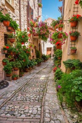Póster Porche en pequeña ciudad en Italia en día soleado, Umbría