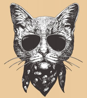 Póster Portrait of Cat with sunglasses and scarf. Hand-drawn illustration. Vector