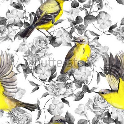Póster Prado salvaje de flores y pájaros. Acuarela. Patrón neutro sin costuras en colores blanco y negro monocromos con pájaros brillantes
