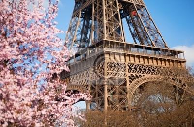 Primavera en París. Florecimiento de cerezo y la Torre Eiffel