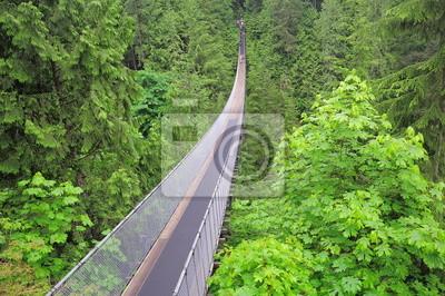 Puente Capilano. North Vancouver.