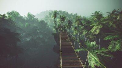 Póster Puente de cuerda en la selva de niebla con las palmas. Retroiluminada.