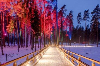 Póster Puente de madera en el parque forestal. Noche luces multicolores.