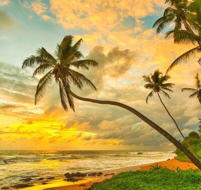 Póster Puesta de sol sobre el mar