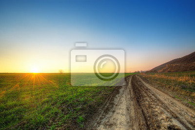 Puesta de sol y campo verde