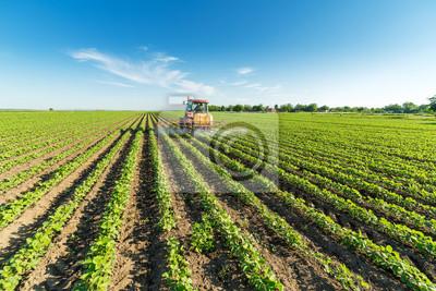 Pulverización de cultivos de soja