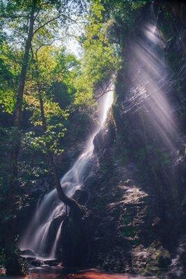 Póster Rayos de sol a Través de las hojas del bosque en la cascada de Hortas, Galicia