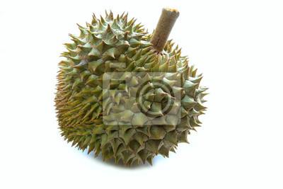 rey durian de frutas en la luz del estudio de Tailandia