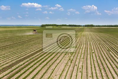 Rociar campo de soja en la primavera.