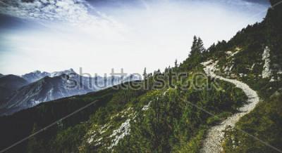 Póster Ruta de senderismo a través de picos alpinos boscosos en sol de verano con vistas a cumbres y rangos distantes en un paisaje escénico austríaco
