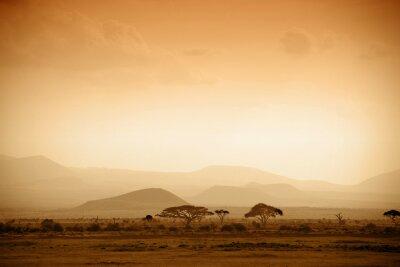 sabana africana al amanecer