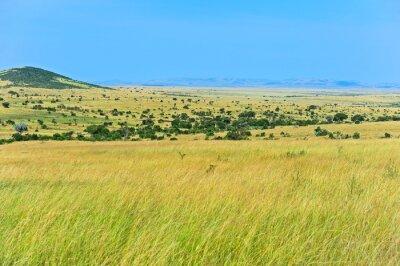 Sabana africana en Kenia