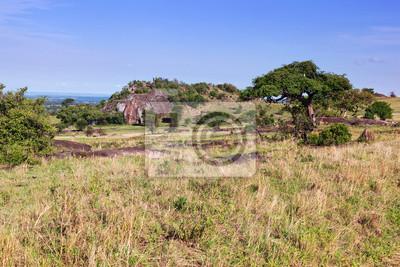 Sabana cubierta de hierba, selva de África. Tsavo West, Kenia.
