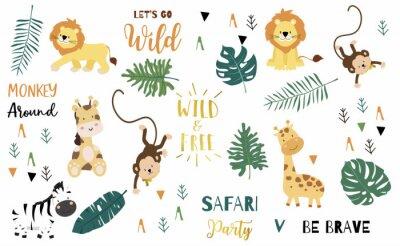 Póster Safari object set with monkey,giraffe,zebra,lion,leaves. illustration for logo,sticker,postcard,birthday invitation.Editable element