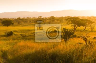 Salida del sol brumosa sobre la sabana africana