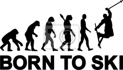 Salto de esquí de la Evolución