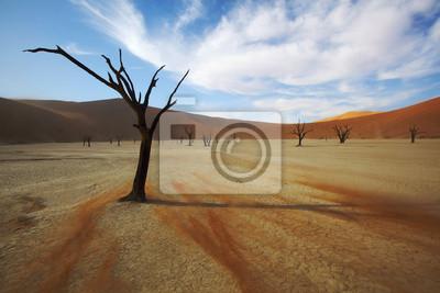 Sand Barrido