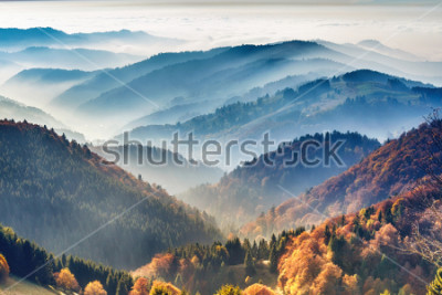 Póster Scenic mountain landscape. View on the Black Forest, Germany, covered in fog. Colorful travel background.
