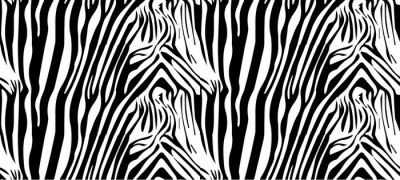 Póster Seamless patrón de cebra