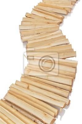 Sendero de los troncos de abedul