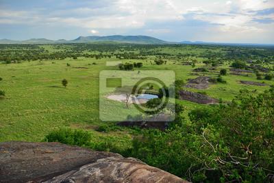 Serengeti, Tanzania, África