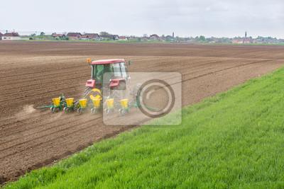 Siembra de agricultores, siembra de cultivos en el campo. La siembra es el proceso de plantar semillas en el suelo como parte de las primeras actividades agrícolas de primavera.