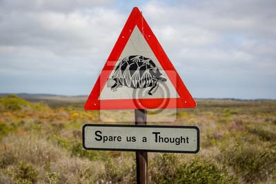 Signo de advertencia sobre la tortuga en el camino en el norte de Sudáfrica