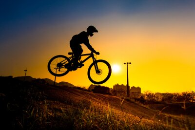 Póster Silueta De Bmx Stunt Rider - tono de color sintonizado