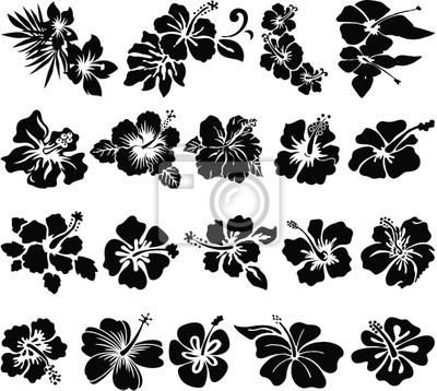 Siluetas de la flor del hibisco