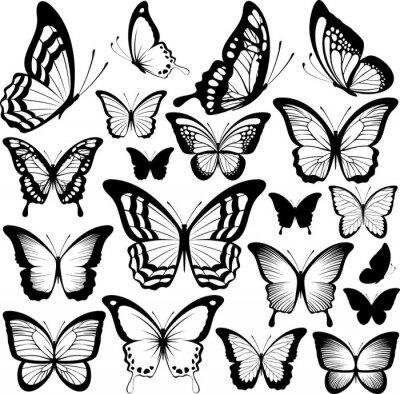 Póster siluetas de mariposas negras