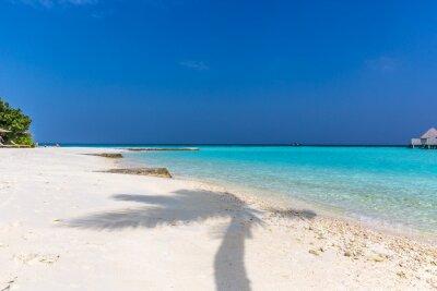 Sombra de palmeras en una playa de arena blanca, destino de paraíso perfecto en Maldivas. Día del cielo azul, sensación de verano.