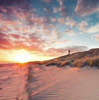 Póster Strand und Dünenlandschaft am Sylter Ellenbogen