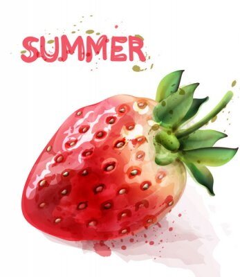 Póster Strawberry isolated Vector watercolor. Fresh fruit summer seasonal cards