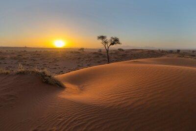 Sun set behind red sand dune in the Namib Desert
